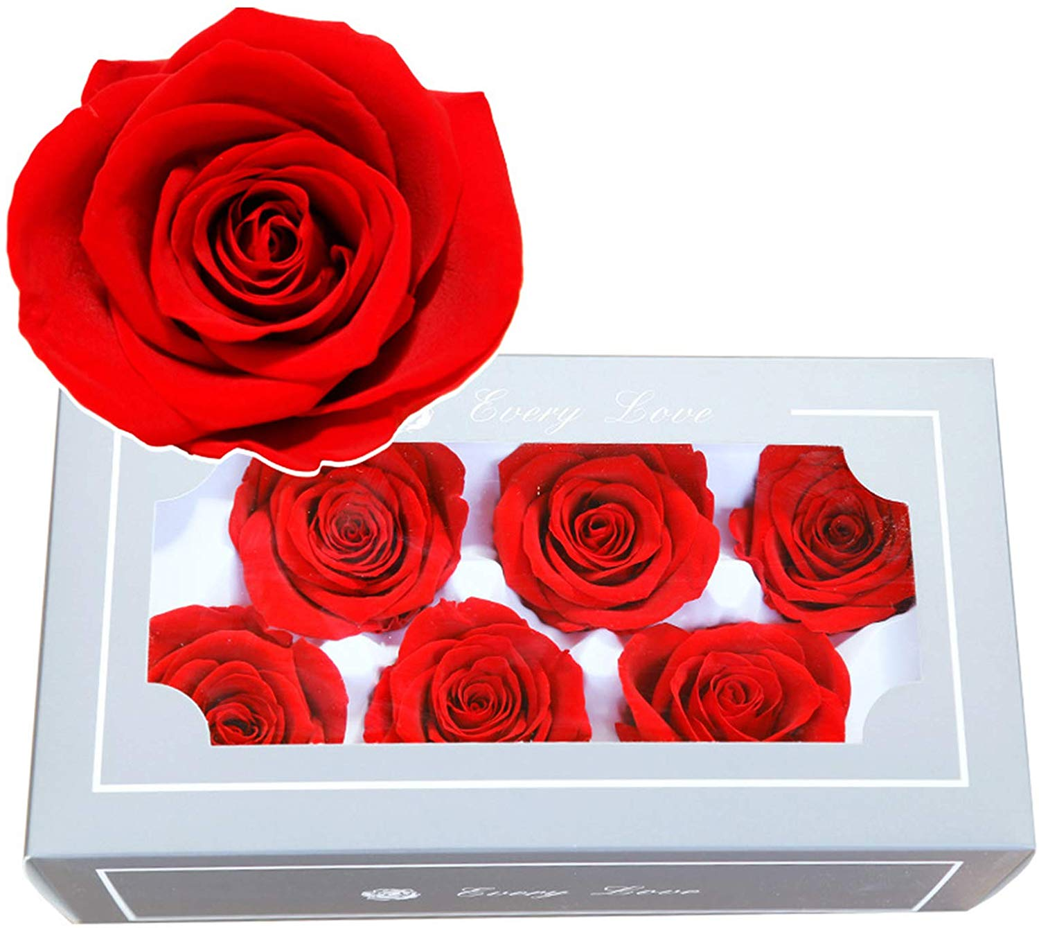 FASFF Preserved Fresh Flower|Eternal Rose Gift kit